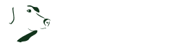 Wildpfoten